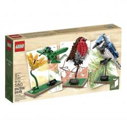 LEGO Exklusive 21301 Ptáci